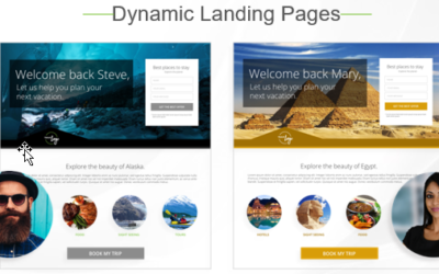 I Have A Great Website. Why Do I Need Dynamic Landing Pages Too?